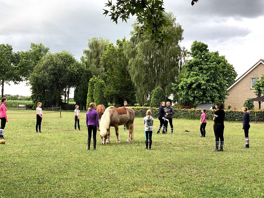 Roosenheuvel-PonySpelen.jpg