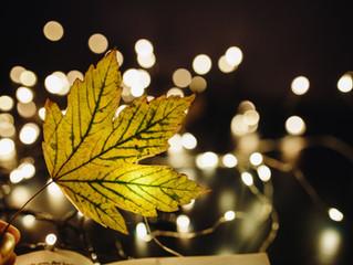 Rendez-vous au Marché de Noël de Louvain-la-Neuve du 1 au 20 décembre 2017