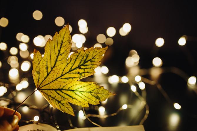 samedi naturopathie 16 décembre
