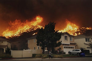NOT_CaliforniaFire_1-216_edited.jpg