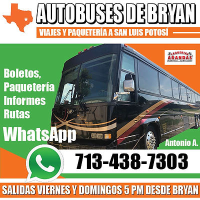 AUTOBUSES DE BRYAN OCT 19 WhatsApp.jpg