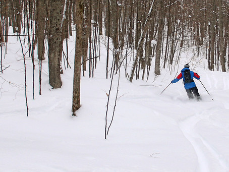 Winter Backcountry Trail Days
