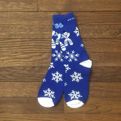 1P36 Blue Chromosome Christmas Sock