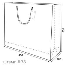 Пакет А3 горизонтальный