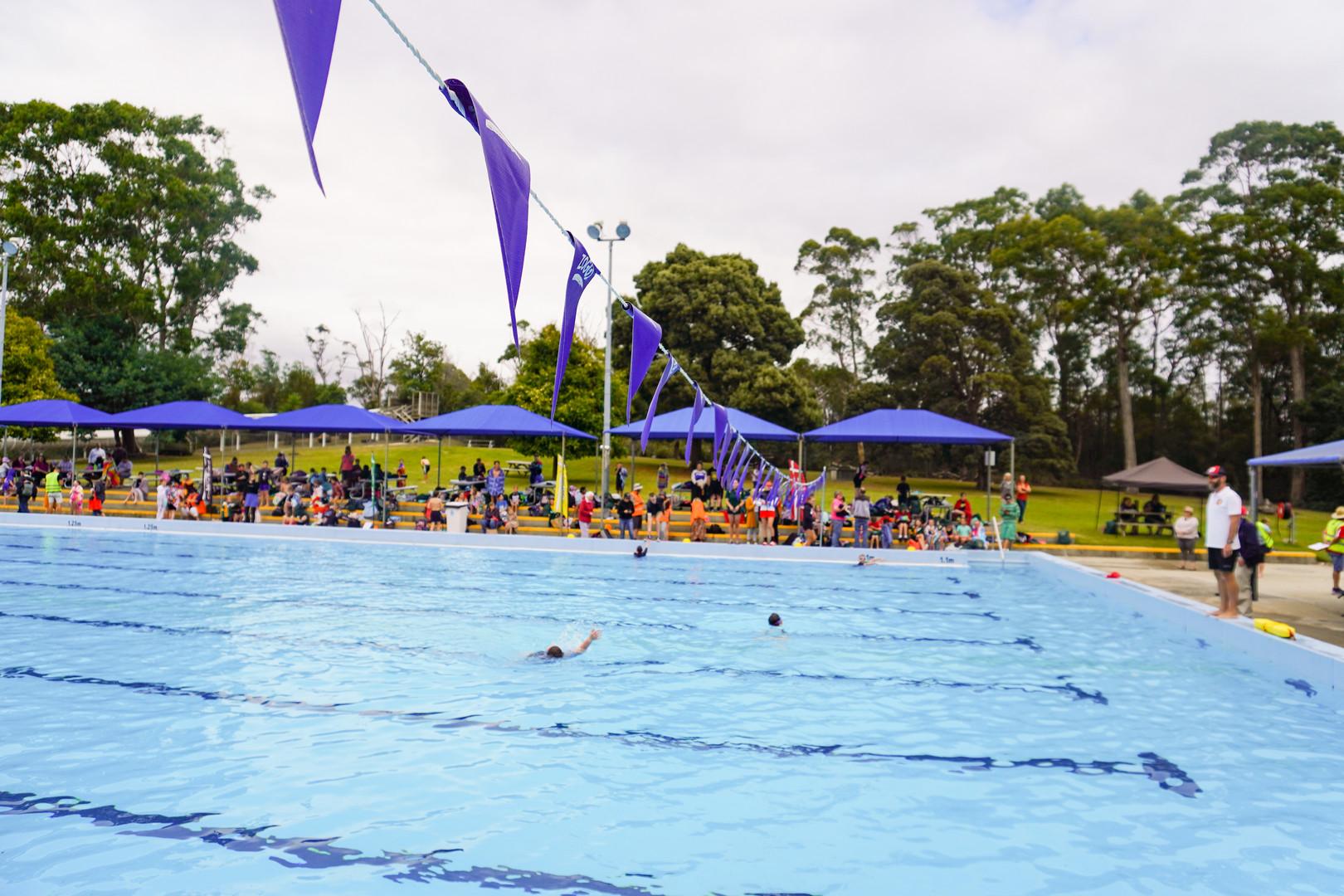 Primary Swimming Carnival 2020 (31).jpg