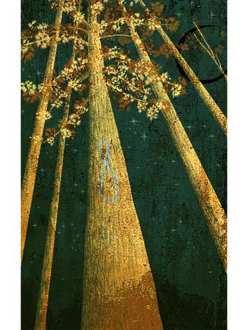 Redwood-Strength