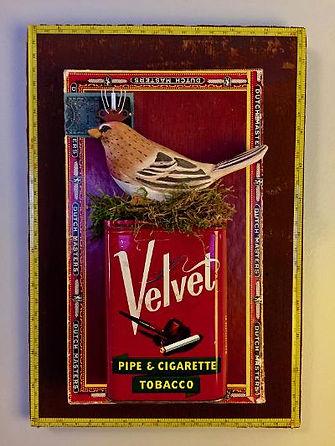 Velvet Queen, Parnell.jpeg