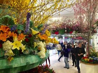 Macy's Spring 2016 Flower Show