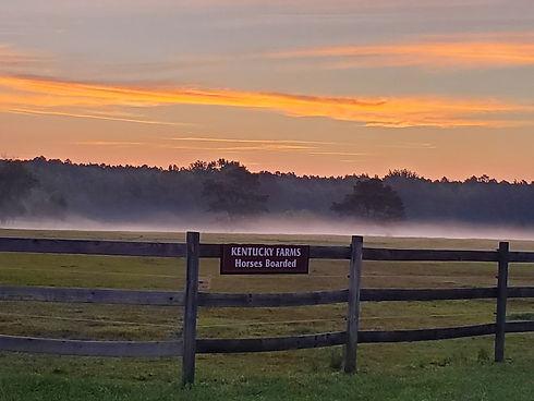 Sunrise at Farm.jpeg