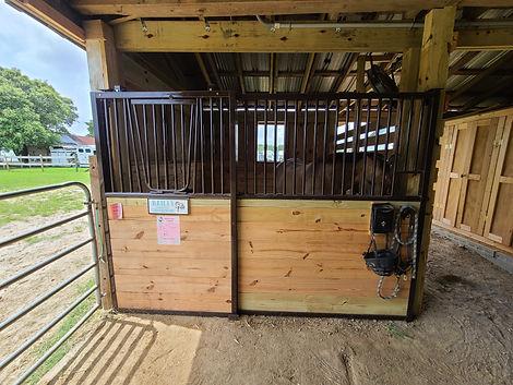 Tarter New Stall.jpg