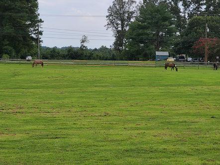 Photos of Kentucky Farms