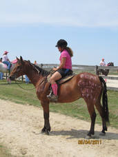 Kentucky Farms - Pink picnic 009.JPG