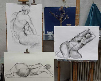 curso_anatomia.jpg