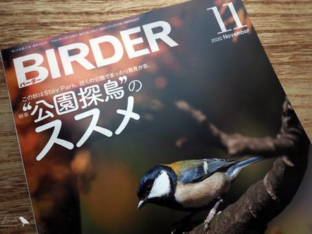 BIRDERに掲載されました。