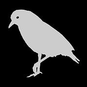 カグー正方形ロゴVer.3.png