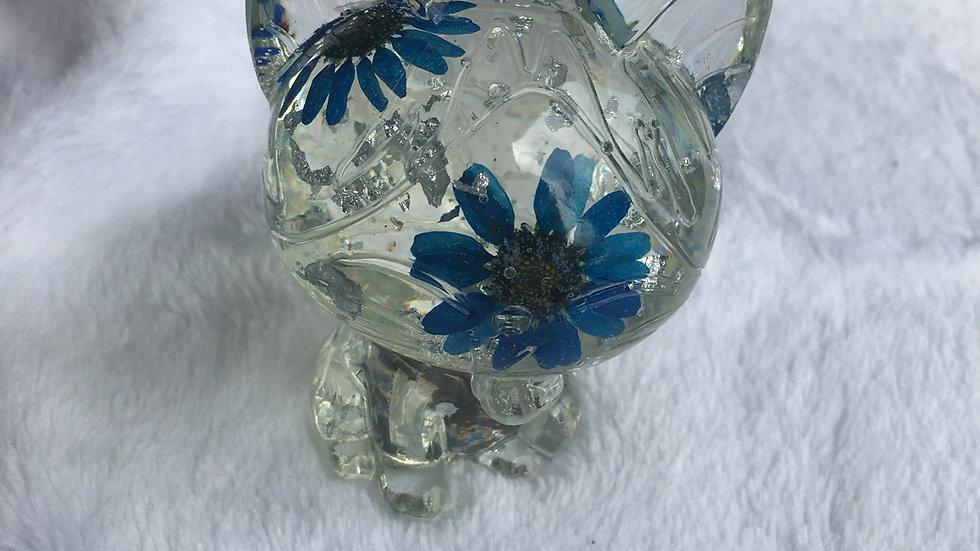 Chat argenté bleu