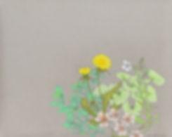 Plants-2-s.jpg