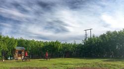 RV and campsite