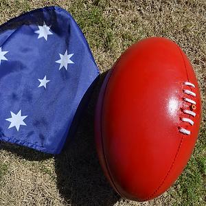 AFL Button.png
