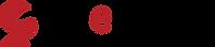 logo_websurg_noir_rouge-e1536660095955 (