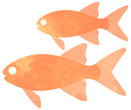 ORANGE FISH.png