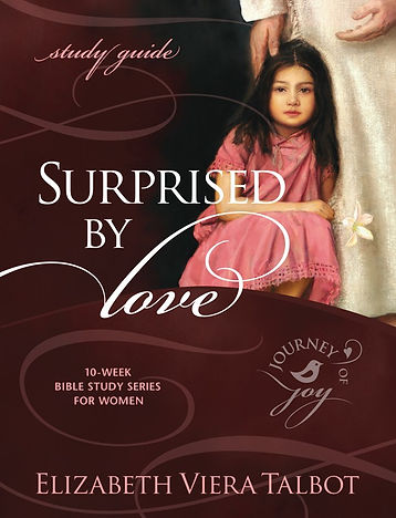 surprised_by_love_study_guide_i_cover.jp