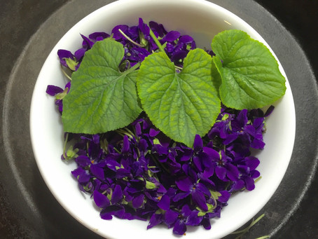 Enchanting Violets