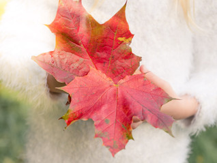Why Autumn is the BEST Season for Family Photos