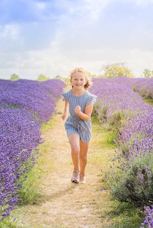 Lavender Mini Sessions