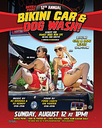 Devils Point - Charity Car + Dog Wash Ba