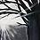 Thumbnail: 'Tree' - Acrylic