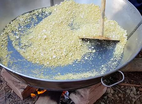 Produção de Farinha de Mandioca e Polvilho Orgânico