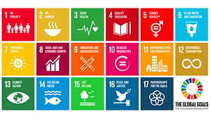 sdgs_global_graphic.png