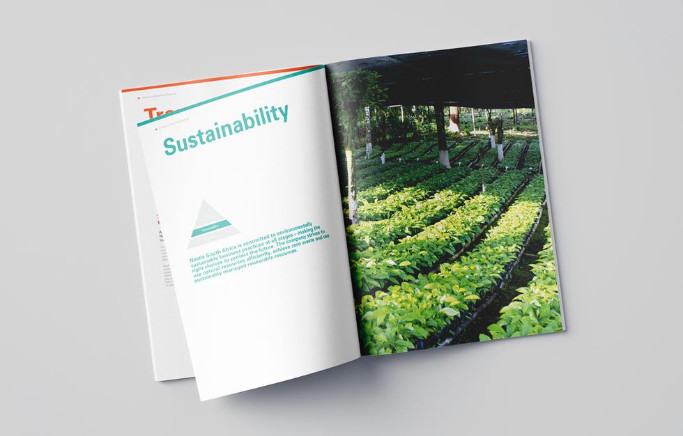 Corporate profile brochure spread 2