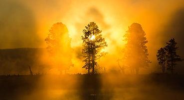 summer_sunrise_yf.jpg