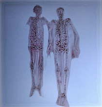 Web_Gobowen_Skeletons 5.jpg