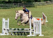 Gray Horse - Summer Gentry.jpg