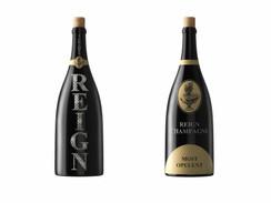 Champagne Bottle Rendering
