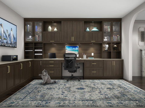 11451 Symmetry Home Office