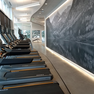 Cardio and mural Install
