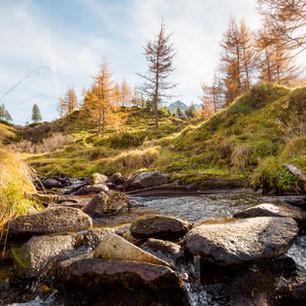 Herbststimmung am Berg in Gastein