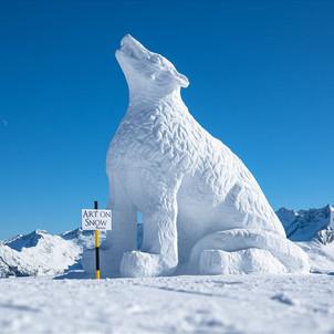 Art on Snow
