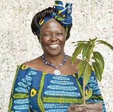Dr. Wangari Maathai Ph.D.