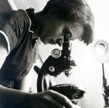 Dr. Rosalind Elsie Franklin, Ph.D.