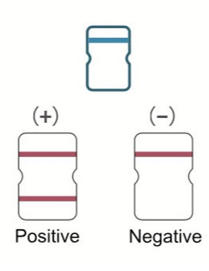 PCR-Tests, Antigen-Schnelltests und Selb