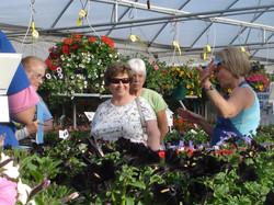 Greenhouse Tour Seminar