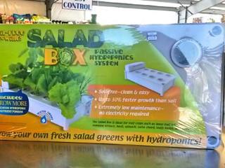Fresh Greens All Year!