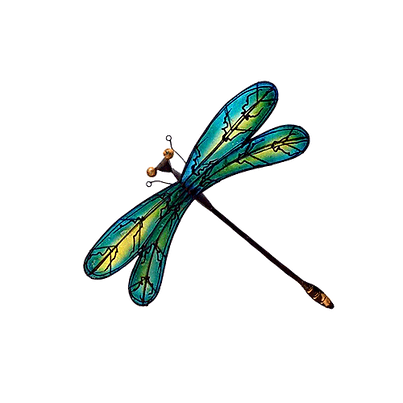 dragonfly 24.png