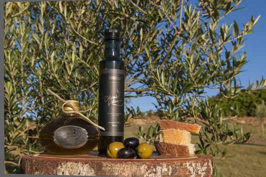 Azeites olivas de Gramado RS (12).jpg