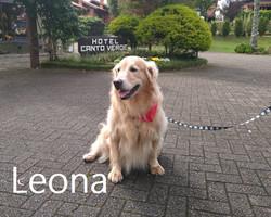 Leona. (00000003)